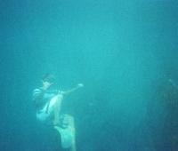 Diving @ Indonesia .jpg